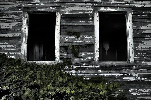 The Windows of My Soul