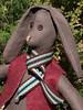 brown-bunny4