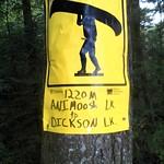 Animoosh - Dickson Lake - 1220m: 1220m. A bit of a let-down, really.