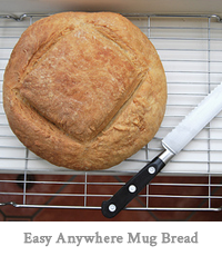 Easy Anywhere Mug bread