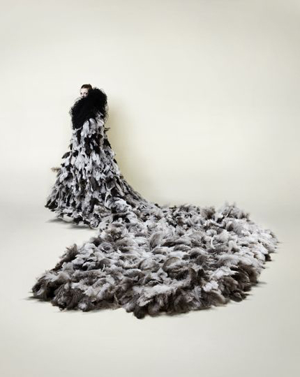 Susie MacMurray, Icaurs, 2012, 1