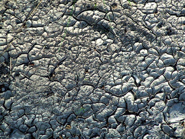 dried mudflat, River Spey