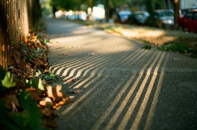 sun stripes