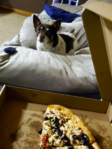 2013-11-15 - Rennie Wants Pizza! - 0003