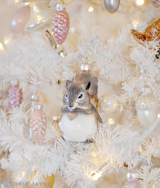 Squirrel in my Christmas tree
