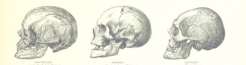 Image taken from page 115 of 'Album géographique. [With illustrations.]'