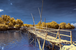 'Bamboo Bridge', Bohol, Philippines (Infrared Photography)