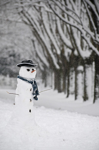 Man of Snow by petetaylor
