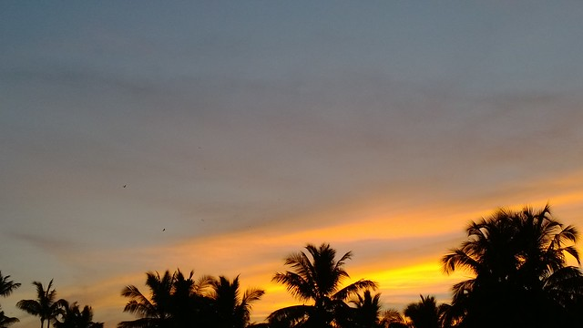 Colors of a tropical dusk