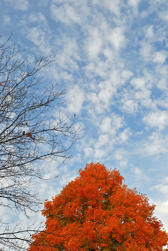 20131019-15 by j2wade