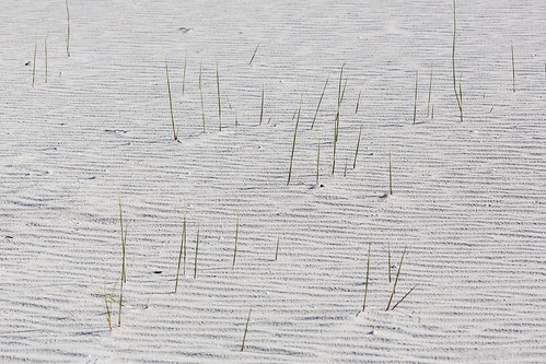 Sand pattern by andiwolfe