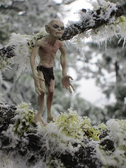Gollum is cold and pissed off