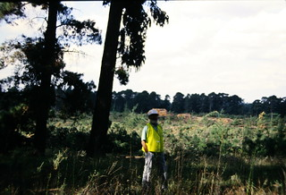 Me in logging area near ACT Forest Depot Stromlo