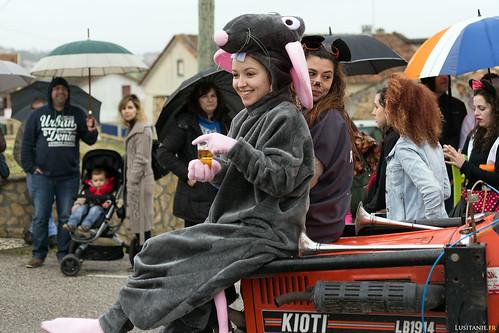 La blague, c'est que ce groupe de gens défilent pour une entreprise d'extermination de rats. D'où les costumes.