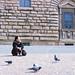 Firenze - Febbraio 2013