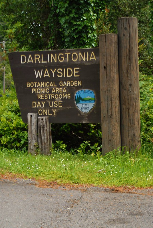 Darlingtonia Wayside sign