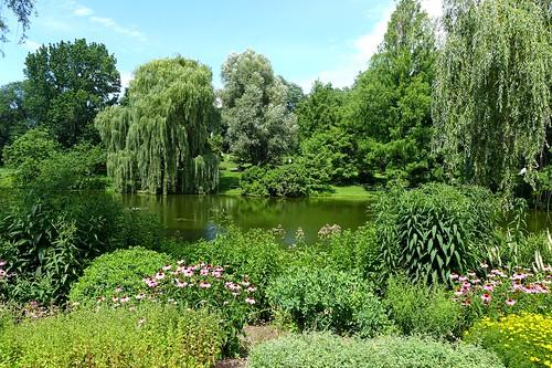 Willow Pond at Mount Auburn Cemetery in Cambridge, Massachusetts
