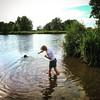 Water, hond, tak, heerlijke zomerse combinatie