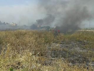 Rutigliano- Incendio in Via Mola  il terzo nel mese di Luglio (6)