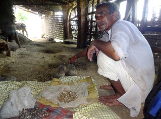 Omchand Mahatule showing his farm-saved seeds.