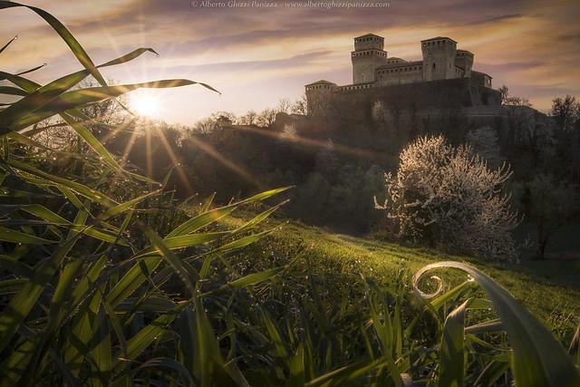 Air of spring at, Nikon D500, AF-S Nikkor 20mm f/1.8G ED