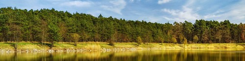 A Forest and a lake - Lower Franconia, Germany