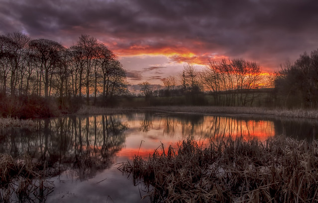 Sunrise At Goosehill Pond