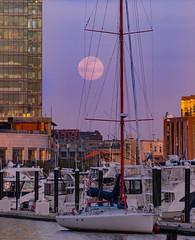 Downtown Moonrise