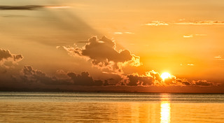 Sunrise, Justos Vinyard