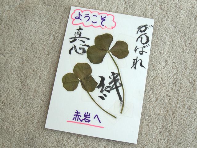 奥久慈トレイルの名物。押し花カード