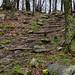 The Stony Man trail