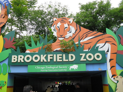 Chicago's Brookfield Zoo.  Brookfield Illinois.  Saturday, June 8th, 2013. by Eddie from Chicago