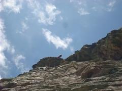 Bramois Climbing