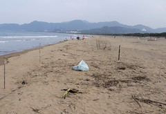 由4根竹竿圍設的樣區,左圖為淨灘前,右圖為淨灘後。