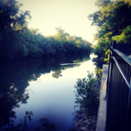 Chicago River North Branch #seenonmyrun