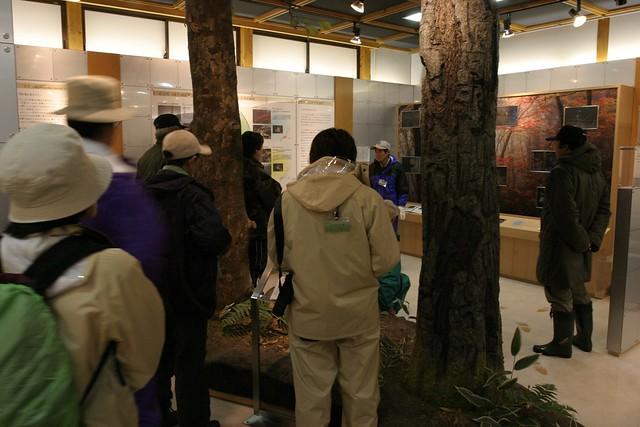 出発前,高原の自然館館内の展示を見ながら話を聞いた.