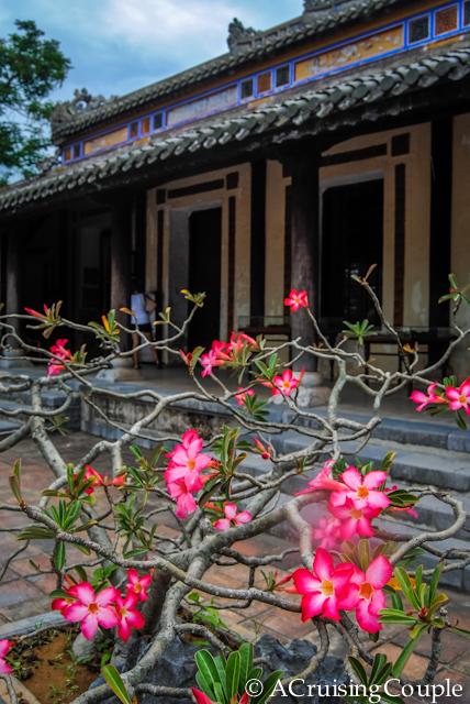 Cidadel Hue Vietnam Flowers and Building