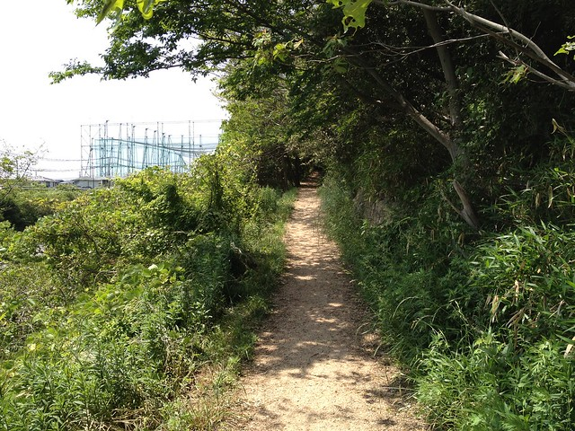 20130526六甲山歩Course4鉢伏山~須磨アルプス 026