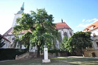 Image of Saint Martin's Cathedral near Bratislava.
