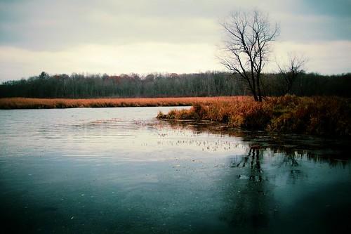 statepark nature minnesota millelacskathiostatepark