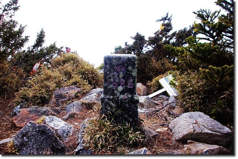 南玉山二等三角點(# 1685 Elev.3383 m)