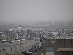 月, 2013-10-14 09:37 - Saimon Bay, Ballard