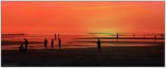 Pantai Life, Bali 2013