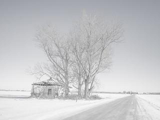 Abandoned,-Holland-Marsh-Area-Near-Toronto,-January-2014-P10301284