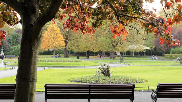 Late Irish autumn