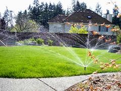 San Antonio Sprinkler System