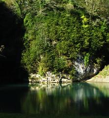 Miroir vert, Gorges de Kakouetta, Ste Engrâce, Haute Soule, Pays basque, Pyrénées Atlantiques, Aquitaine, France.