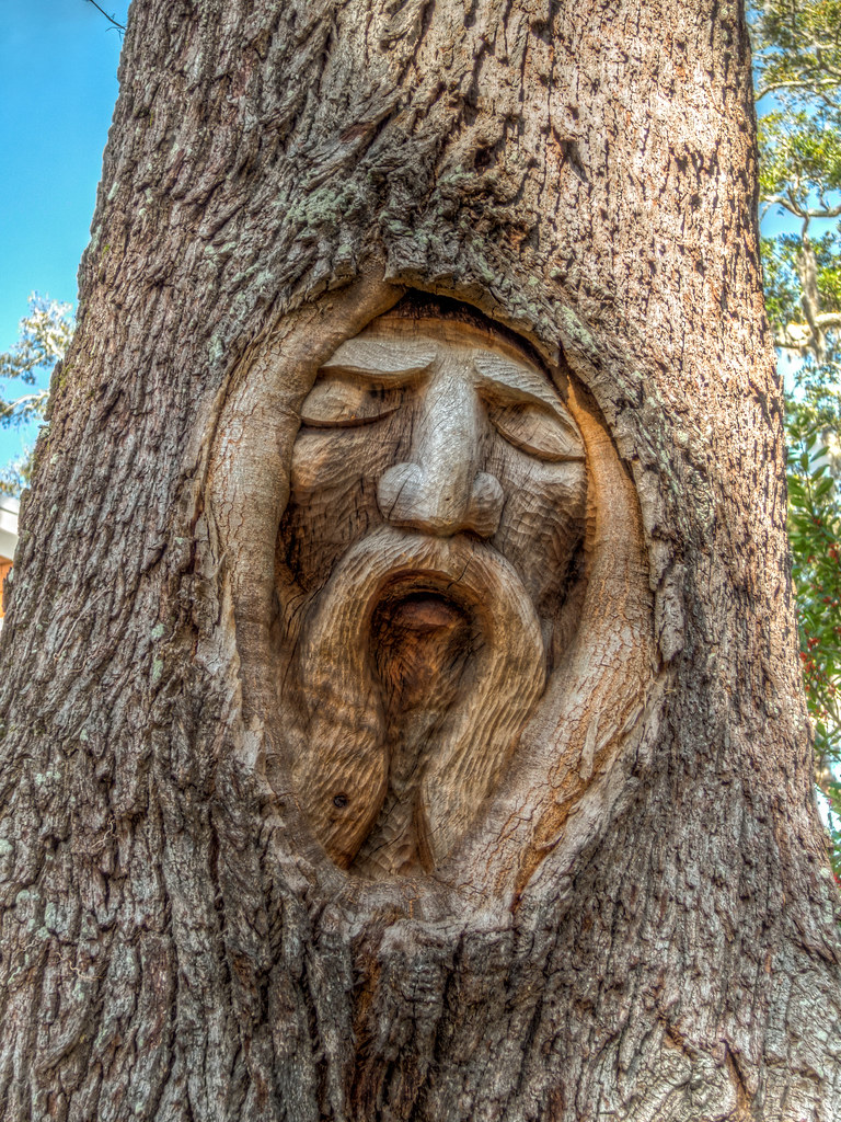 Tree spirits of st simons island carvings georgia