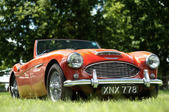 aston martin db4(0.0), aston martin db5(0.0), ac ace(0.0), race car(1.0), automobile(1.0), vehicle(1.0), automotive design(1.0), austin-healey 3000(1.0), classic car(1.0), vintage car(1.0), land vehicle(1.0), sports car(1.0),