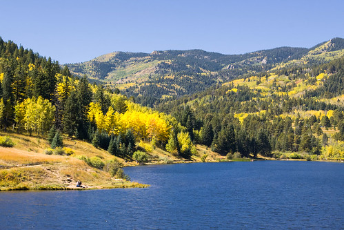 autumn trees forest flora colorado unitedstates rye aspens sanisabelnationalforest lakeisabel
